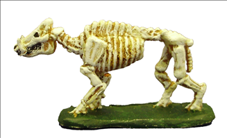 Skeletal Boar