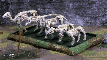 Skeleton Animals