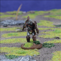 Orc Warrior 1 with Axe & Shield - Front view