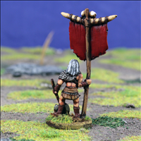 Standard Bearer - Rear View