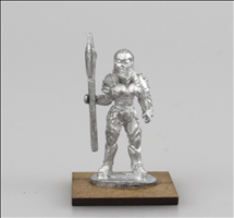 Armoured Human Warrior 5
